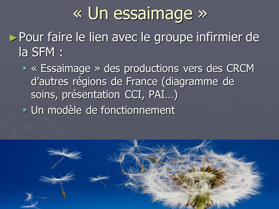 « Un essaimage » ► Pour faire le lien avec le groupe infirmier de la SFM :  « Essaimage » des productions vers des CRCM d'autres régions de France (diagramme de soins, présentation CCI, PAI…)  Un modèle de fonctionnement