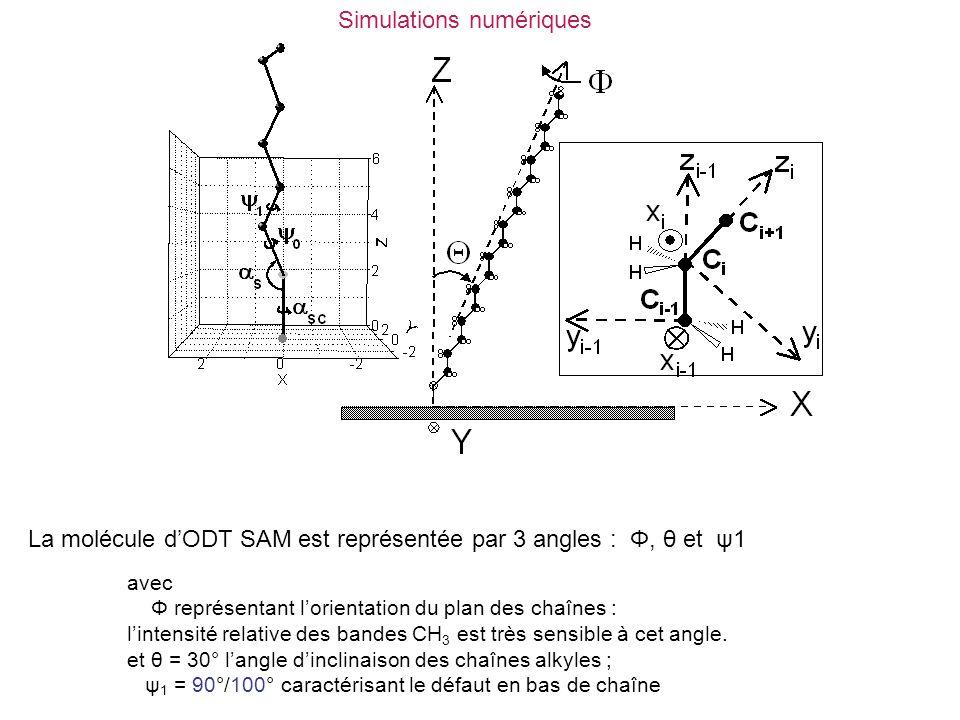 Simulations numériques avec Φ représentant l'orientation du plan des chaînes : l'intensité relative des bandes CH 3 est très sensible à cet angle. et