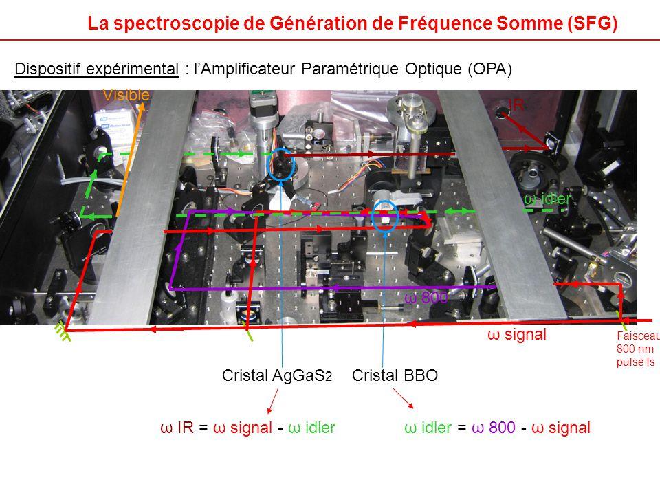 Dispositif expérimental : l'Amplificateur Paramétrique Optique (OPA) Cristal AgGaS 2 Cristal BBO Visible IR ω signal ω idler ω 800 ω idler = ω 800 - ω