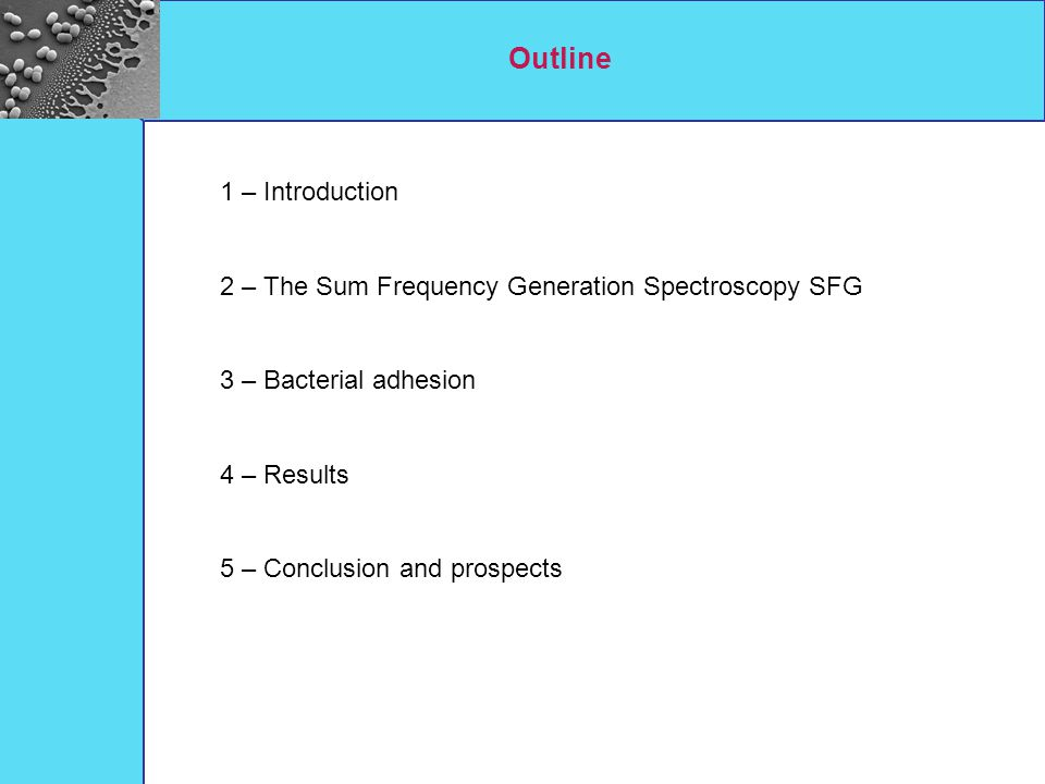 Outline 1 – Introduction 2 – The Sum Frequency Generation Spectroscopy SFG 3 – Bacterial adhesion 4 – Results 5 – Conclusion and prospects