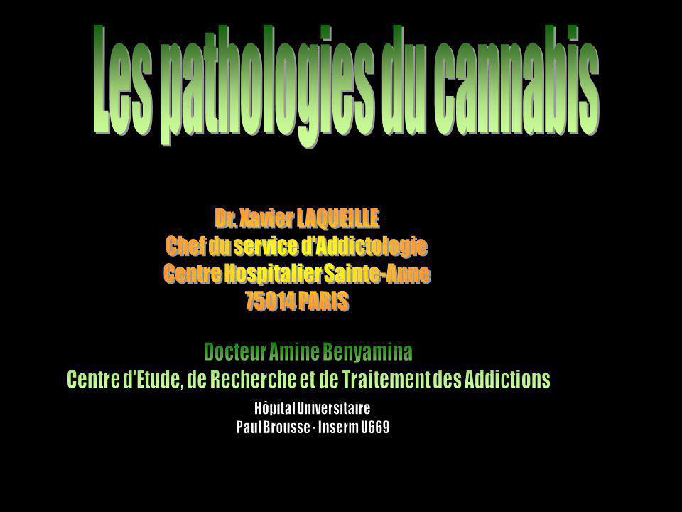 LIMITATIONS MÉTHODOLOGIQUES L 'existence d 'une polytoxicomanie Taille des populations étudiées Critères du diagnostic de la psychose peu stricte Niveau de consommation peu pris en compte Difficultés du diagnostic entre psychose induite et schizophrénie, difficulté d 'observation après sevrage L 'absence de prise en compte d 'autres pathologies (dépression : Bovasson et coll 2001, Patton et coll 2002)
