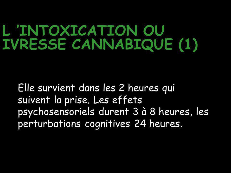 L 'INTOXICATION OU IVRESSE CANNABIQUE (1) Elle survient dans les 2 heures qui suivent la prise. Les effets psychosensoriels durent 3 à 8 heures, les p