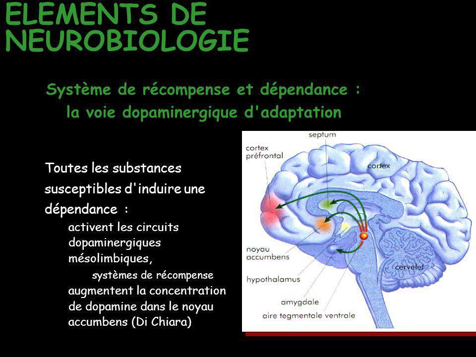 ELEMENTS DE NEUROBIOLOGIE Toutes les substances susceptibles d'induire une dépendance : activent les circuits dopaminergiques mésolimbiques, systèmes