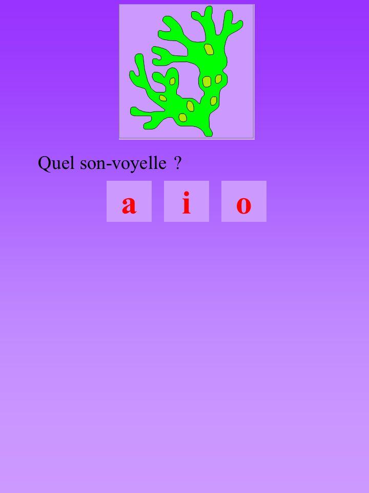 bal5  a  a 