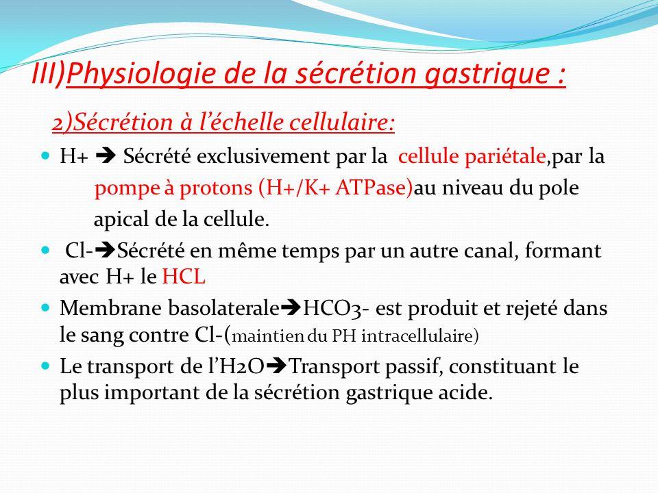 2)Sécrétion à l'échelle cellulaire: H+  Sécrété exclusivement par la cellule pariétale,par la pompe à protons (H+/K+ ATPase)au niveau du pole apical