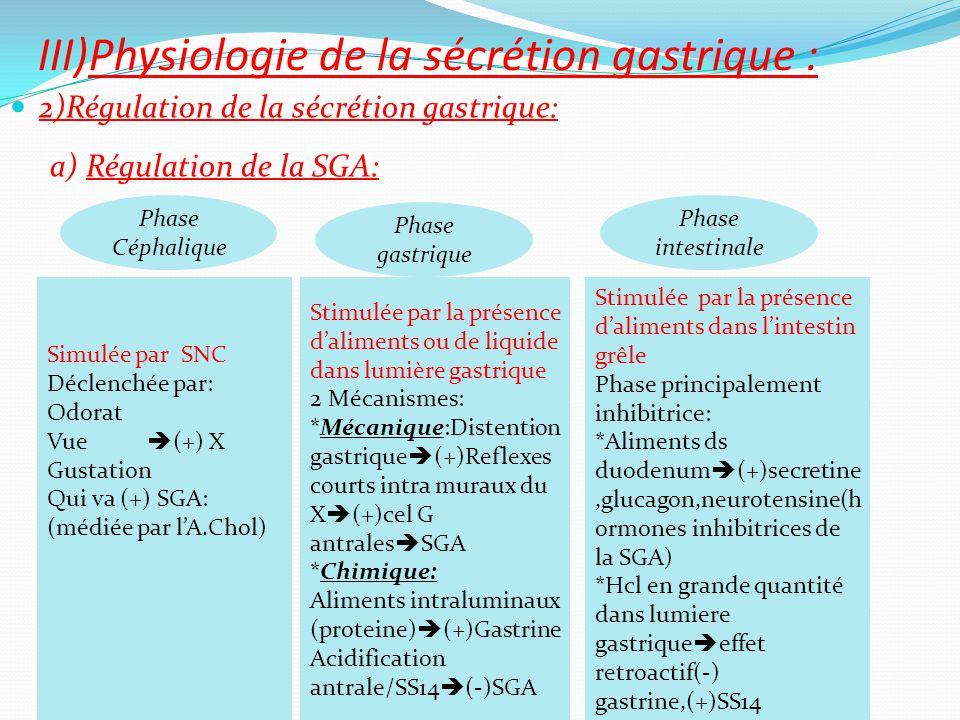 2)Régulation de la sécrétion gastrique: a) Régulation de la SGA: III)Physiologie de la sécrétion gastrique : Simulée par SNC Déclenchée par: Odorat Vu