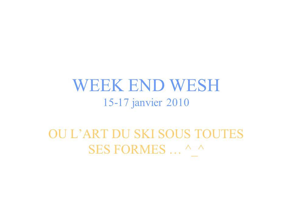 WEEK END WESH 15-17 janvier 2010 OU L'ART DU SKI SOUS TOUTES SES FORMES … ^_^