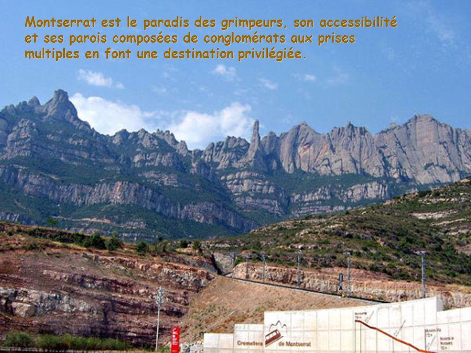 Son nom peut se traduire par montagne (mont) en dent de scie (serrat). C'est un massif aux formes digitées qui s'élève brusquement à l'ouest de la riv