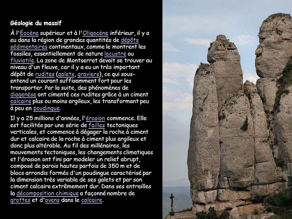 Géologie du massif À l Éocène supérieur et à l Oligocène inférieur, il y a eu dans la région de grandes quantités de dépôts sédimentaires continentaux, comme le montrent les fossiles, essentiellement de nature lacustre ou fluviatile.