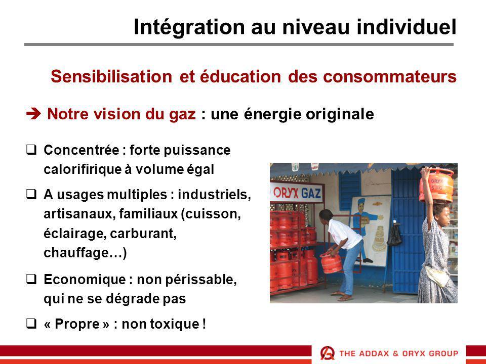 Intégration au niveau individuel Sensibilisation et éducation des consommateurs  Notre vision du gaz : une énergie originale  Concentrée : forte pui