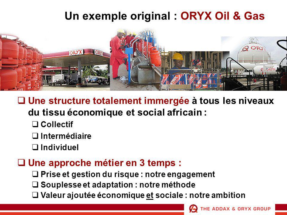 Intégration au niveau collectif  Terminal de Cotonou, Bénin  1997 : un des investissements les plus importants depuis 30 ans par un groupe privé au Bénin  1999 : inauguration  Capacité : 55 000m3 hydrocarbures + 3 000 m3 GPL  Rôle stratégique d'approvisionnement des pays enclavés  2004 : accord sur une extension avec des partenaires locaux Investissements pérennes dans des infrastructures  A fort potentiel local et régional  Tremplins pour d'autres développements commerciaux