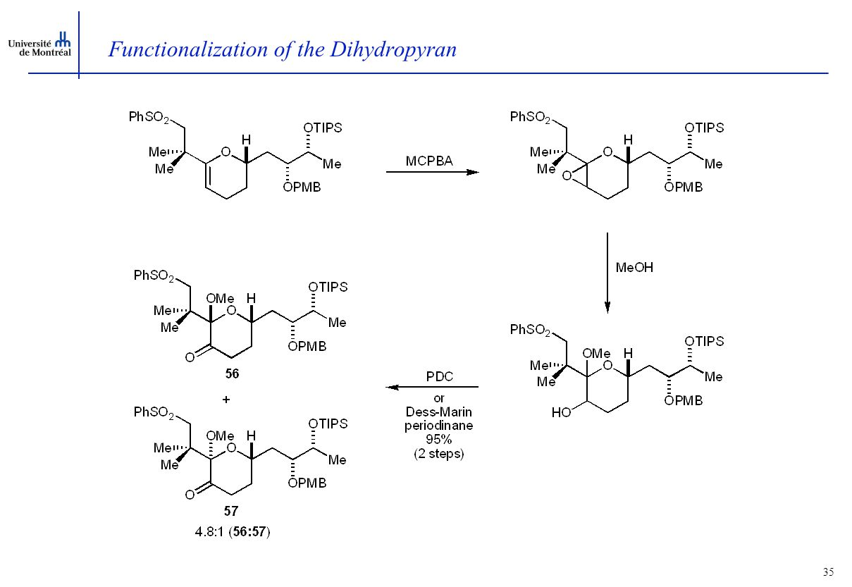34 Synthesis of the Dihydropyran
