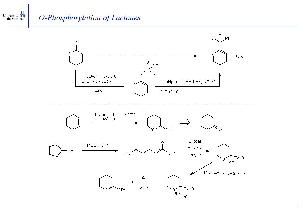 5 O-Phosphorylation of Lactones
