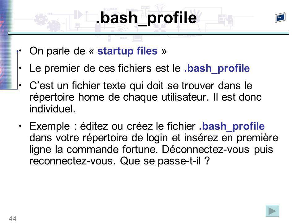 44.bash_profile On parle de « startup files » Le premier de ces fichiers est le.bash_profile C'est un fichier texte qui doit se trouver dans le répertoire home de chaque utilisateur.