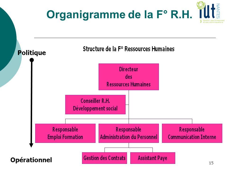 Organigramme de la F° R.H. Politique Opérationnel 15