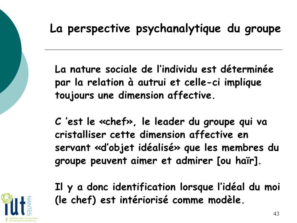 La perspective psychanalytique du groupe La nature sociale de l'individu est déterminée par la relation à autrui et celle-ci implique toujours une dim