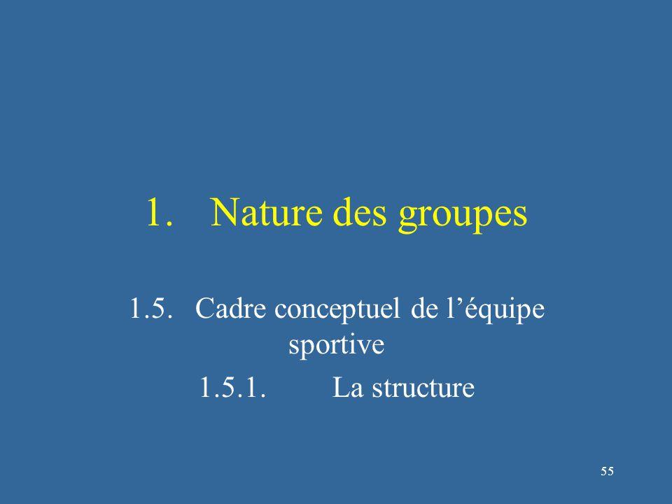 55 1.Nature des groupes 1.5.Cadre conceptuel de l'équipe sportive 1.5.1.La structure
