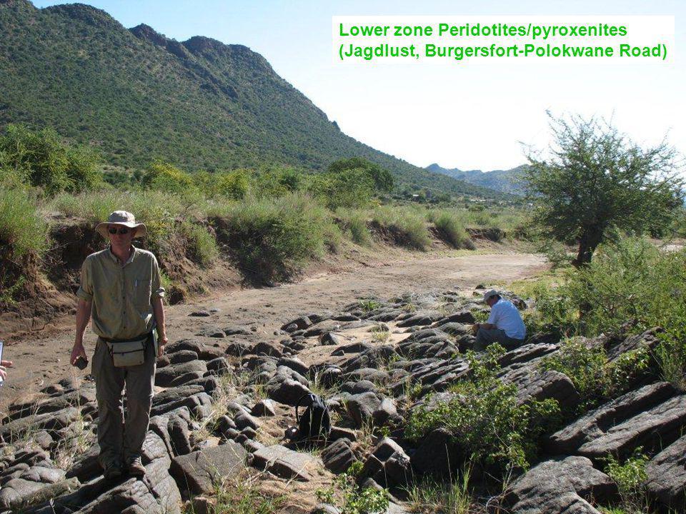 Lower zone Peridotites/pyroxenites (Jagdlust, Burgersfort-Polokwane Road)