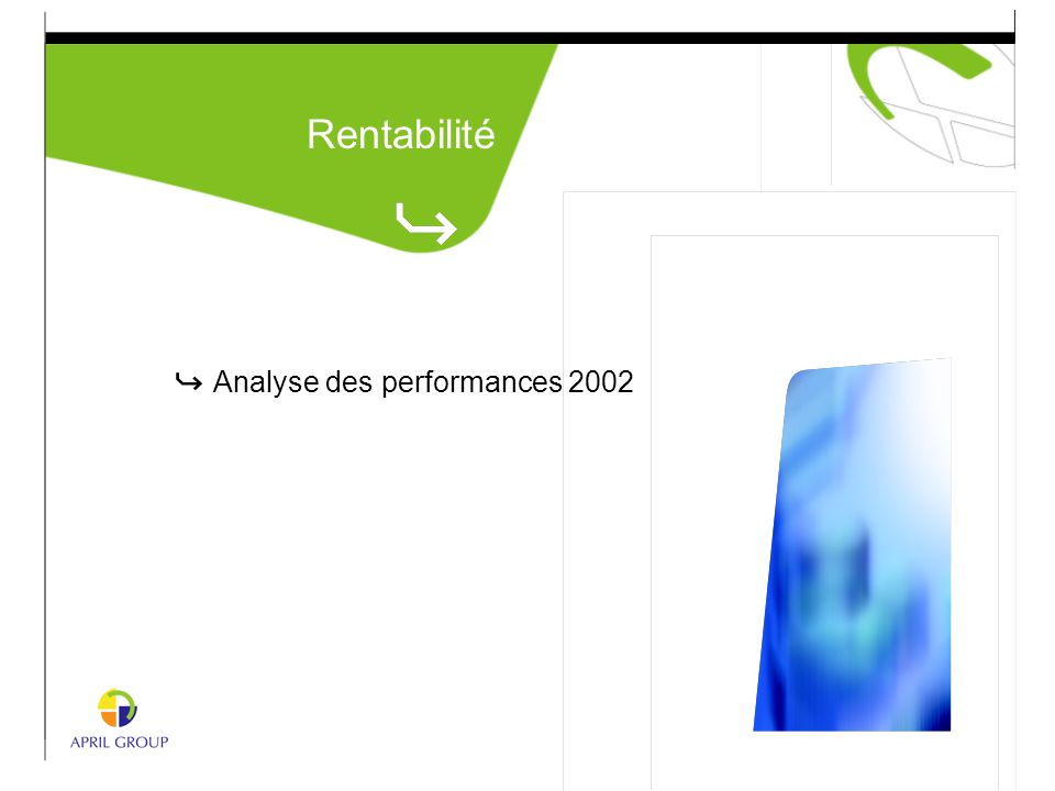 Analyse des performances 2002 Rentabilité
