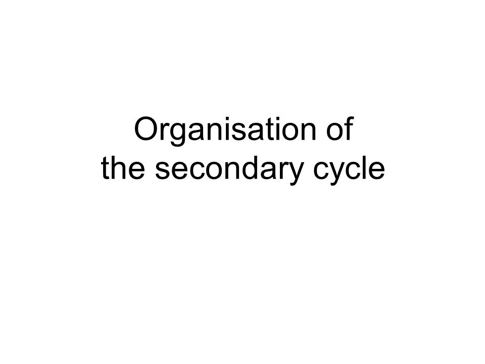 Organisation of the secondary cycle