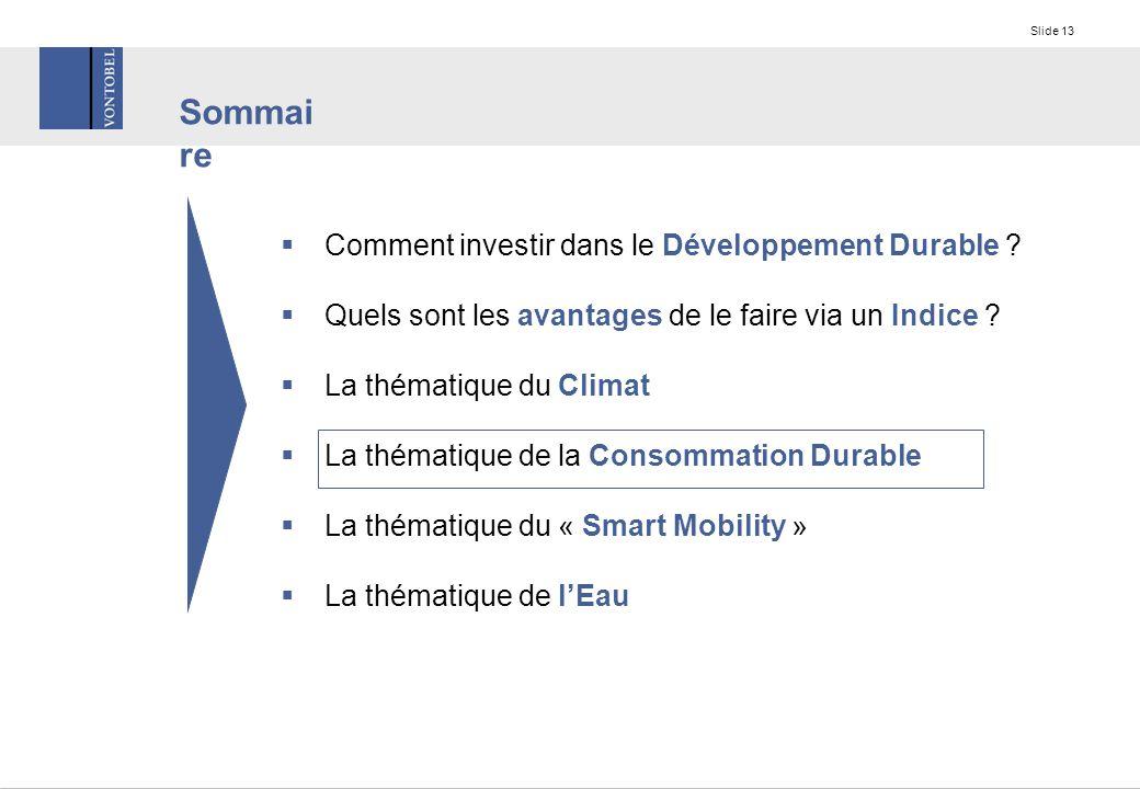 Slide 13  Comment investir dans le Développement Durable .