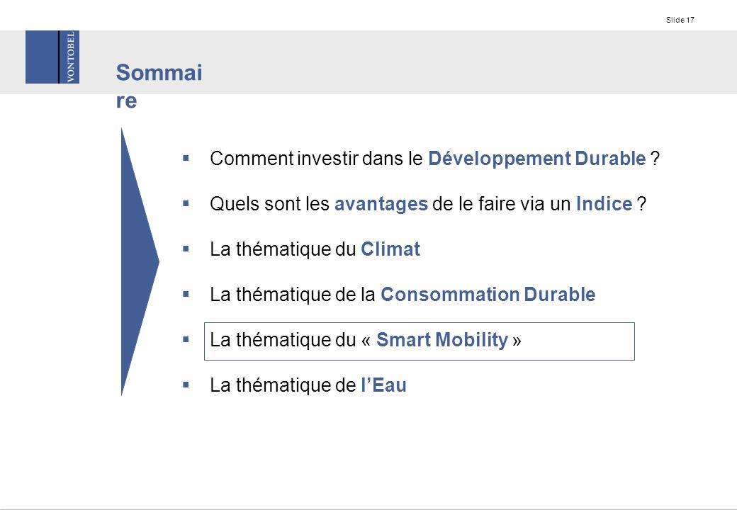Slide 17  Comment investir dans le Développement Durable .