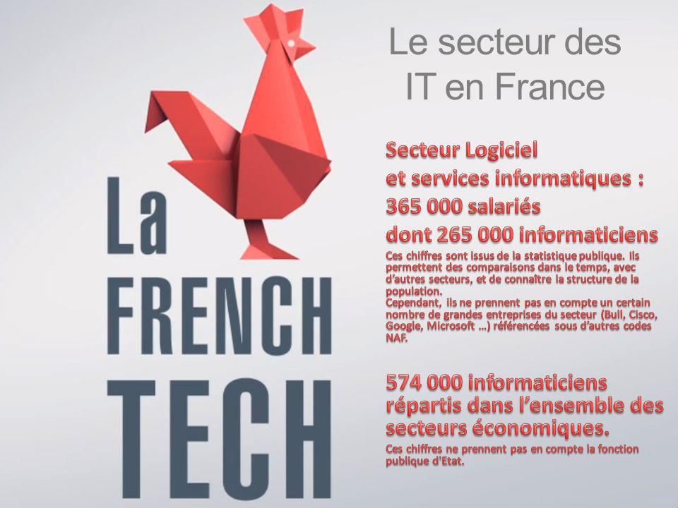 Le secteur des IT en France