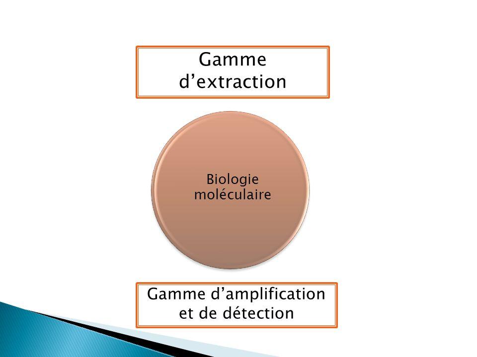Biologie moléculaire Gamme d'extraction Gamme d'amplification et de détection