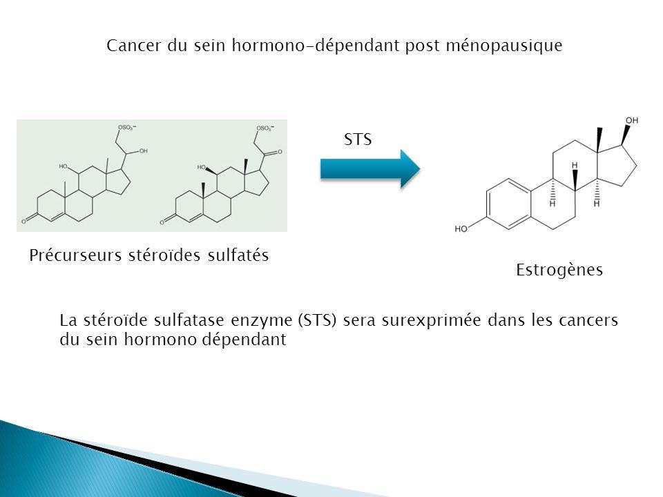 Cancer du sein hormono-dépendant post ménopausique Estrogènes Précurseurs stéroïdes sulfatés STS La stéroïde sulfatase enzyme (STS) sera surexprimée d