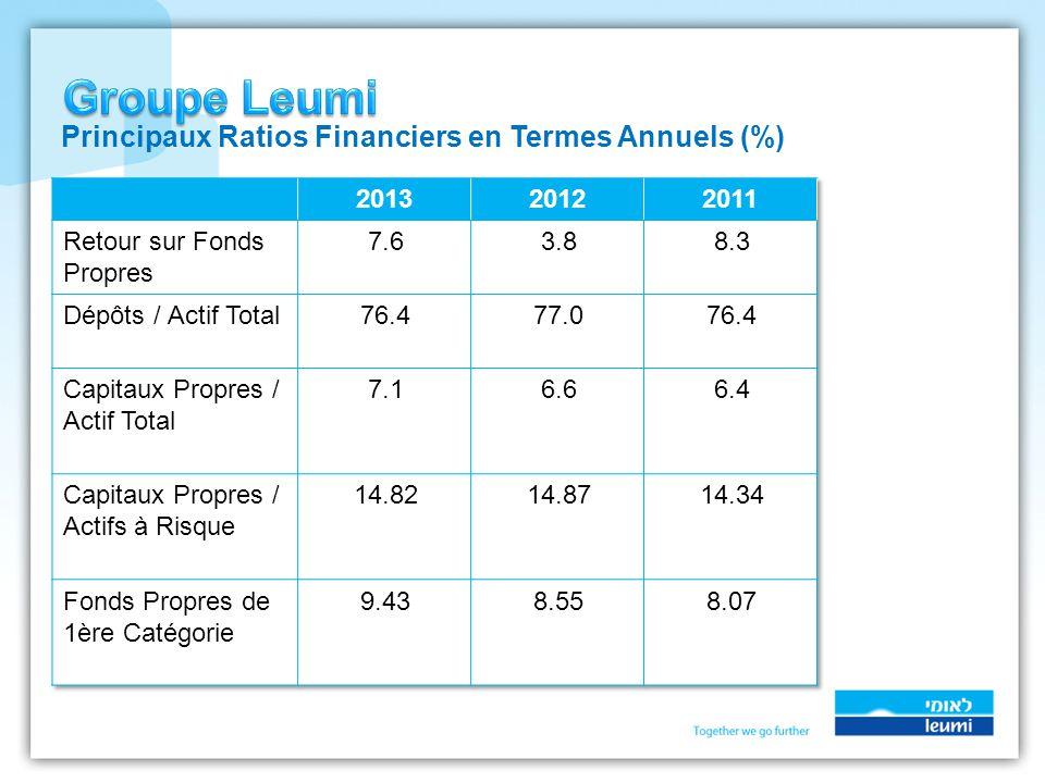 Principaux Ratios Financiers en Termes Annuels (%)