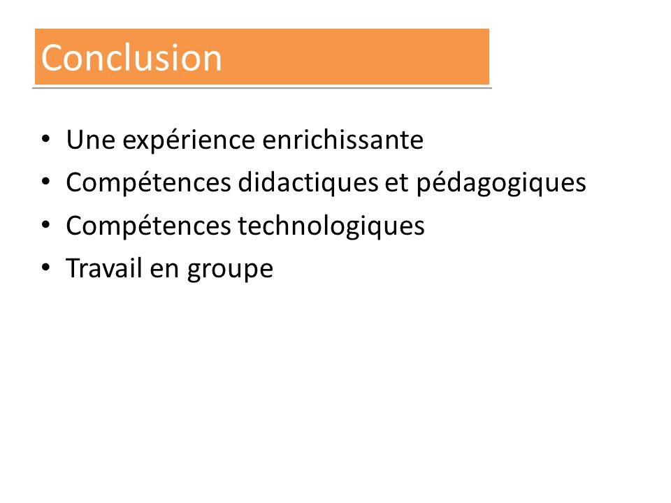 Conclusion Une expérience enrichissante Compétences didactiques et pédagogiques Compétences technologiques Travail en groupe
