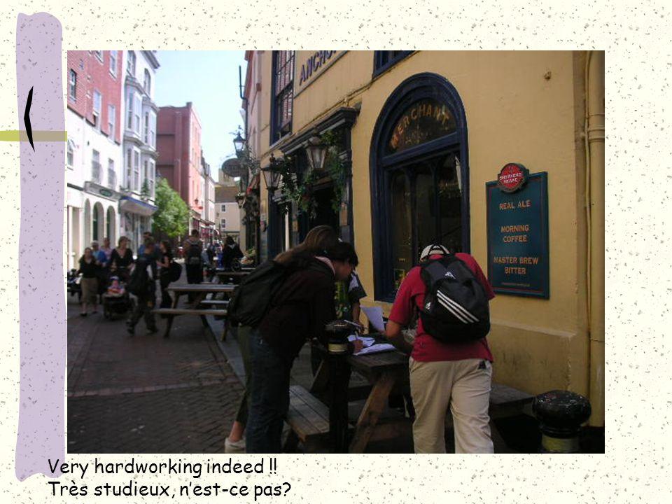 Very hardworking indeed !! Très studieux, n'est-ce pas?