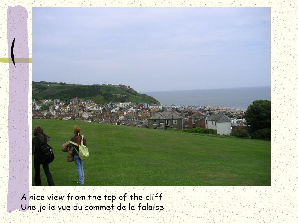 A nice view from the top of the cliff Une jolie vue du sommet de la falaise