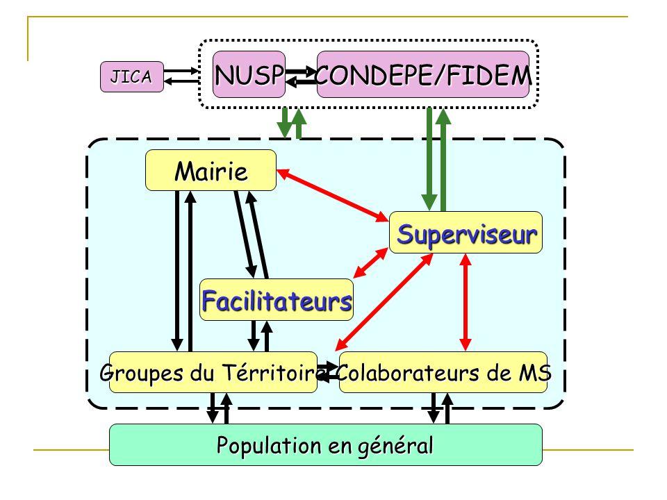 Mairie Superviseur Facilitateurs Groupes du Térritoire Colaborateurs de MS Population en général CONDEPE/FIDEMNUSP JICA