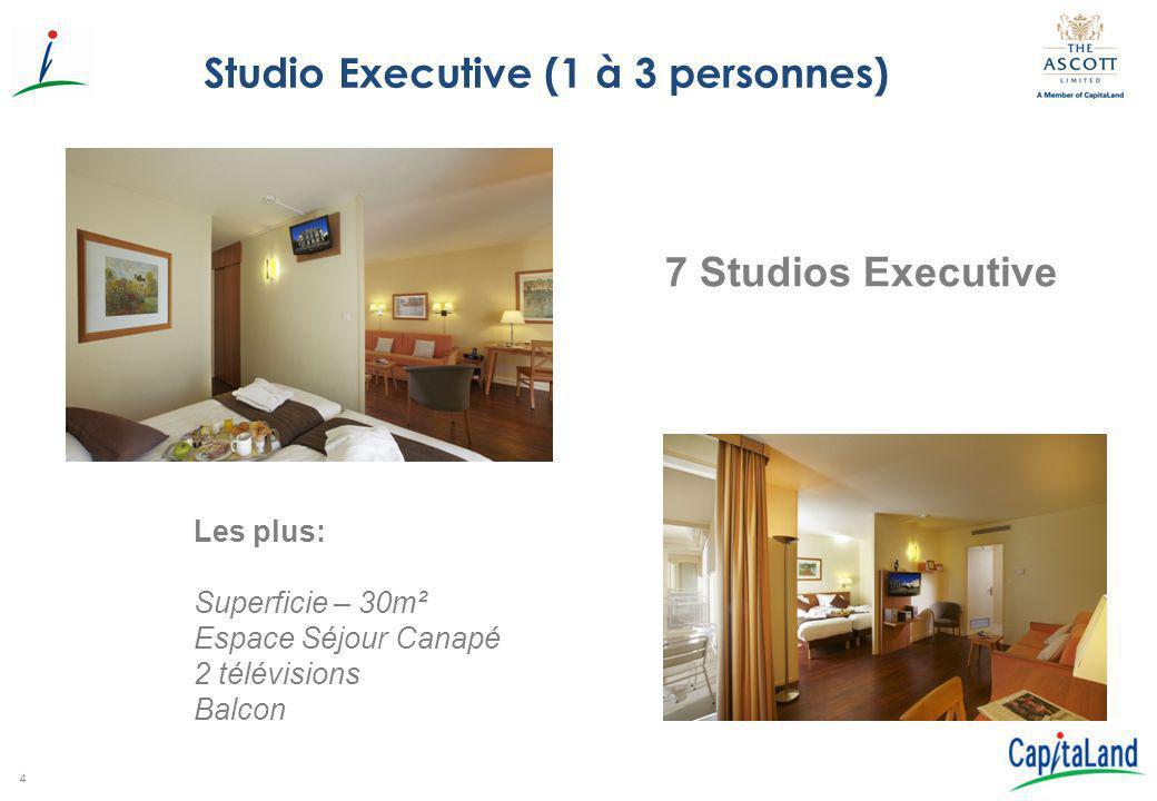 4 Studio Executive (1 à 3 personnes) 7 Studios Executive Les plus: Superficie – 30m² Espace Séjour Canapé 2 télévisions Balcon