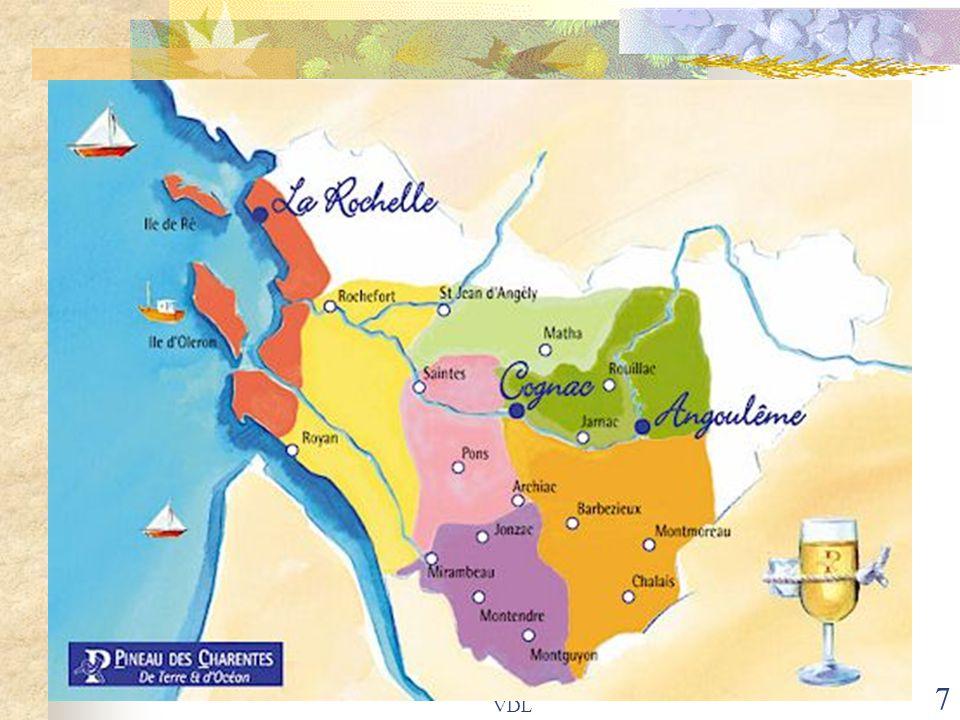 8 Le Pineau : apéritif charentais servi frais, rosé ou blanc, issu d'un subtil mélange de Cognac et de jus de raisin, aux arômes de fruits et noix.
