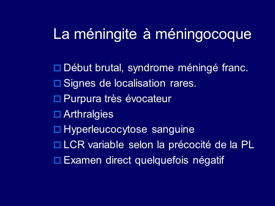 La méningite à méningocoque  Début brutal, syndrome méningé franc.  Signes de localisation rares.  Purpura très évocateur  Arthralgies  Hyperleuc