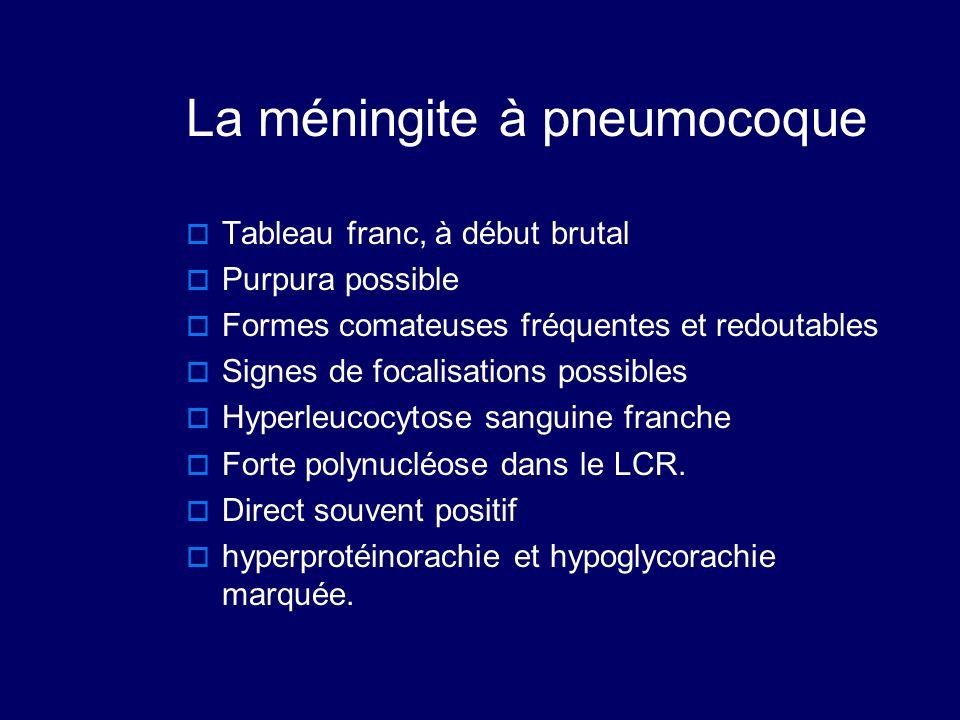 La méningite à pneumocoque  Tableau franc, à début brutal  Purpura possible  Formes comateuses fréquentes et redoutables  Signes de focalisations