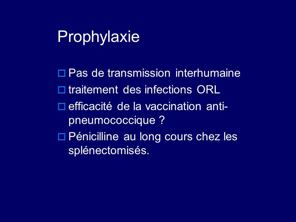 Prophylaxie  Pas de transmission interhumaine  traitement des infections ORL  efficacité de la vaccination anti- pneumococcique ?  Pénicilline au