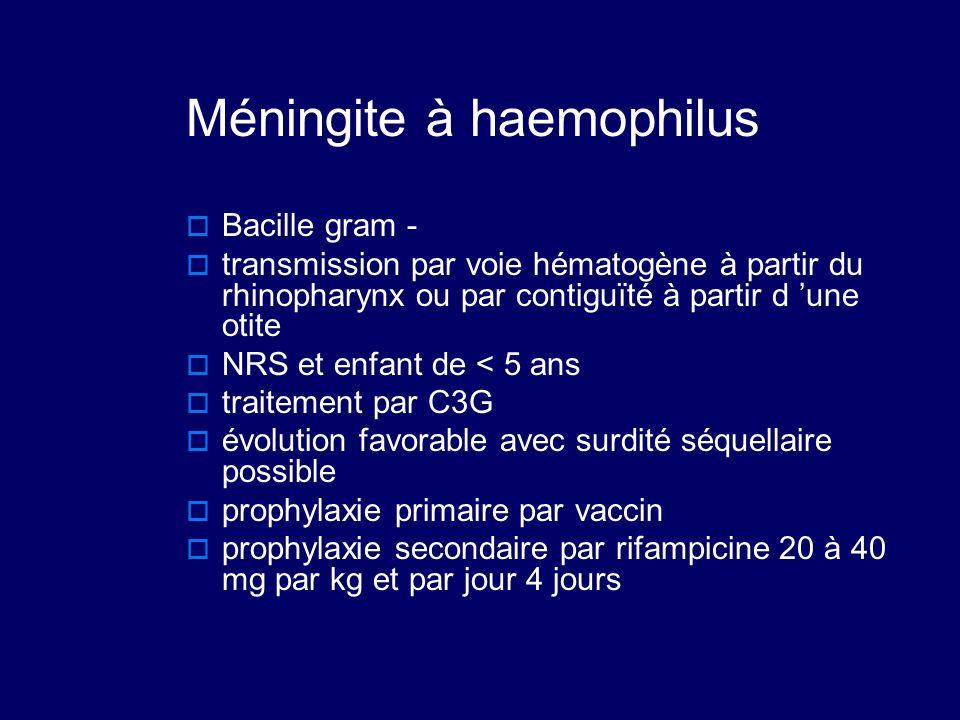 Méningite à haemophilus  Bacille gram -  transmission par voie hématogène à partir du rhinopharynx ou par contiguïté à partir d 'une otite  NRS et