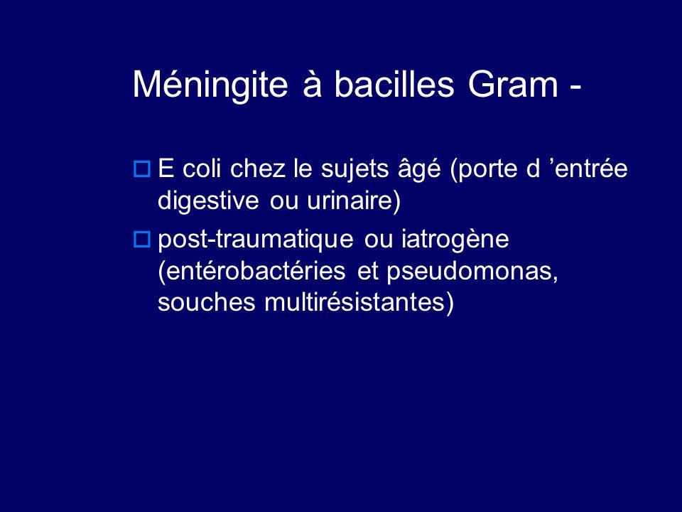 Méningite à bacilles Gram -  E coli chez le sujets âgé (porte d 'entrée digestive ou urinaire)  post-traumatique ou iatrogène (entérobactéries et ps