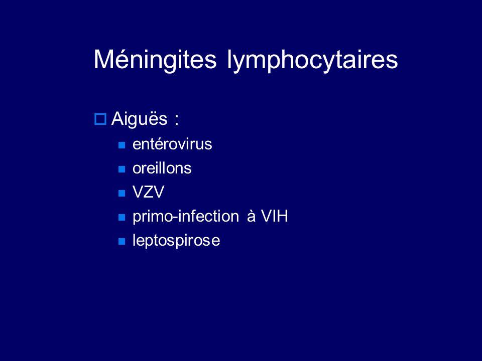 Méningites lymphocytaires  Aiguës : entérovirus oreillons VZV primo-infection à VIH leptospirose