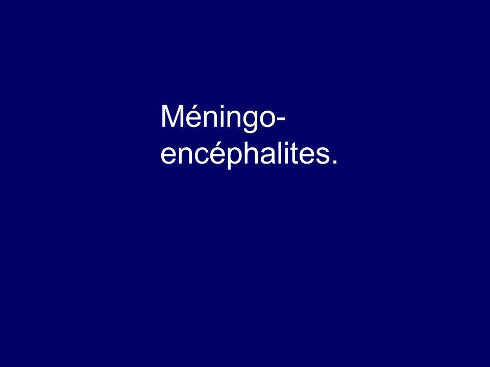 Méningo- encéphalites.