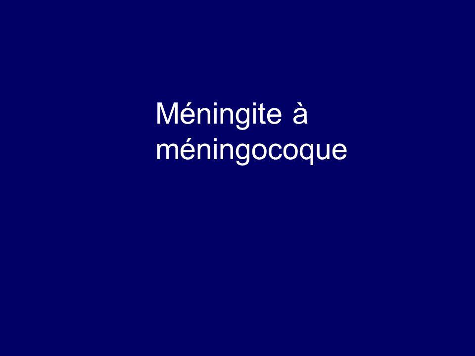 Méningocoque  Diplocoque gram –  Saprophyte des voies aériennes supérieures  Diffusion par voie hématogène à partir d 'un portage rhino-pharyngé  300 cas/an en France  Germe fragile dans le milieu extérieur, risque de cultures négatives en cas de retard