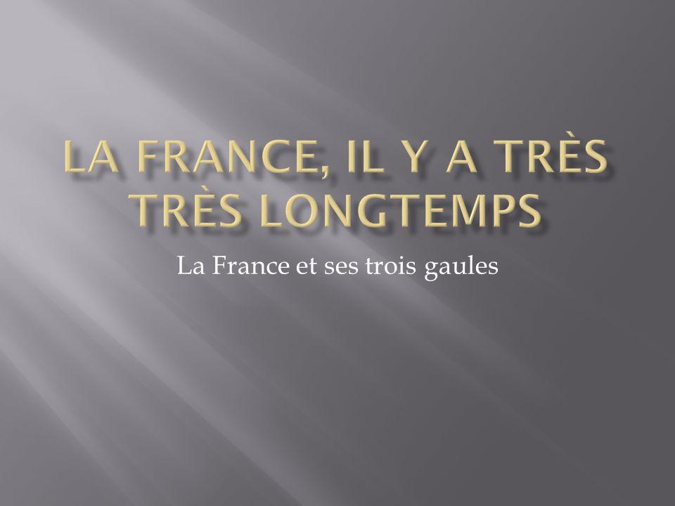 La France et ses trois gaules