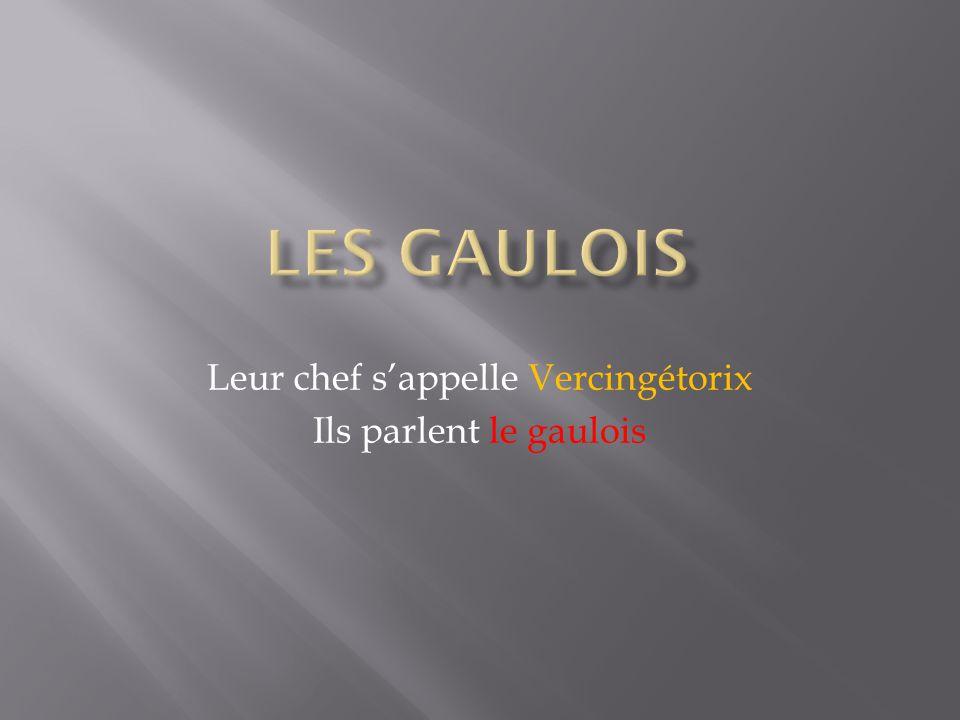 Leur chef s'appelle Vercingétorix Ils parlent le gaulois