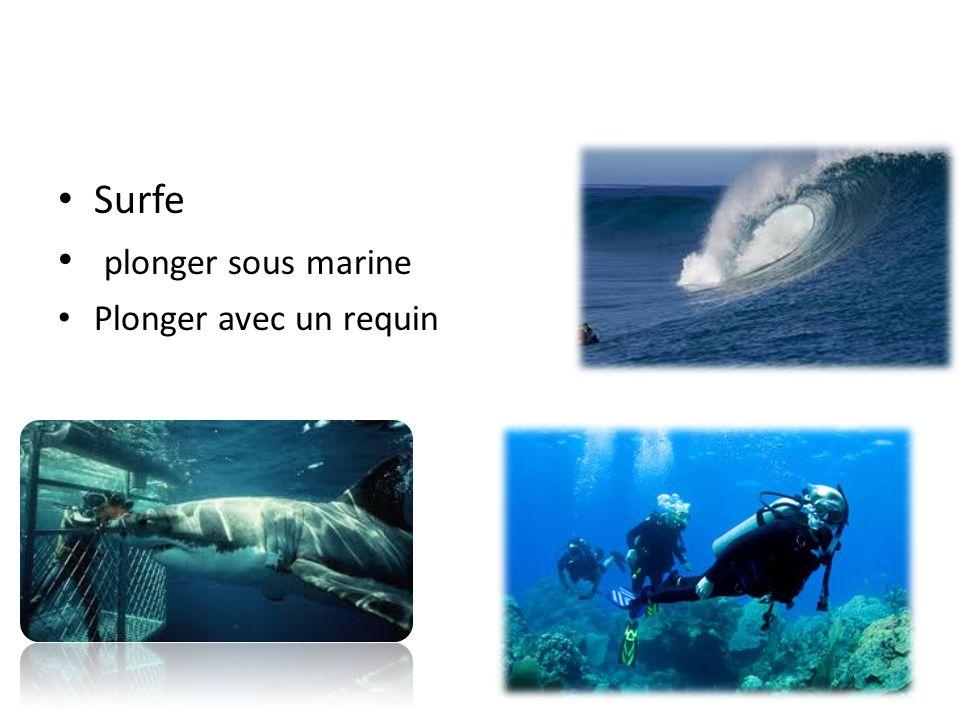 Surfe plonger sous marine Plonger avec un requin