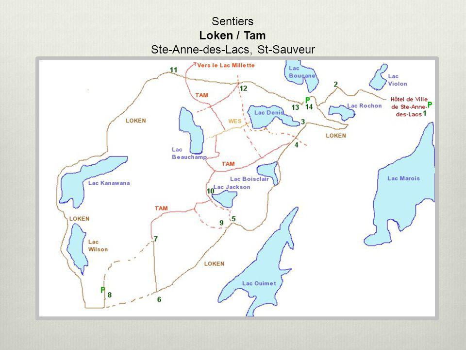 Sentiers Loken / Tam Ste-Anne-des-Lacs, St-Sauveur