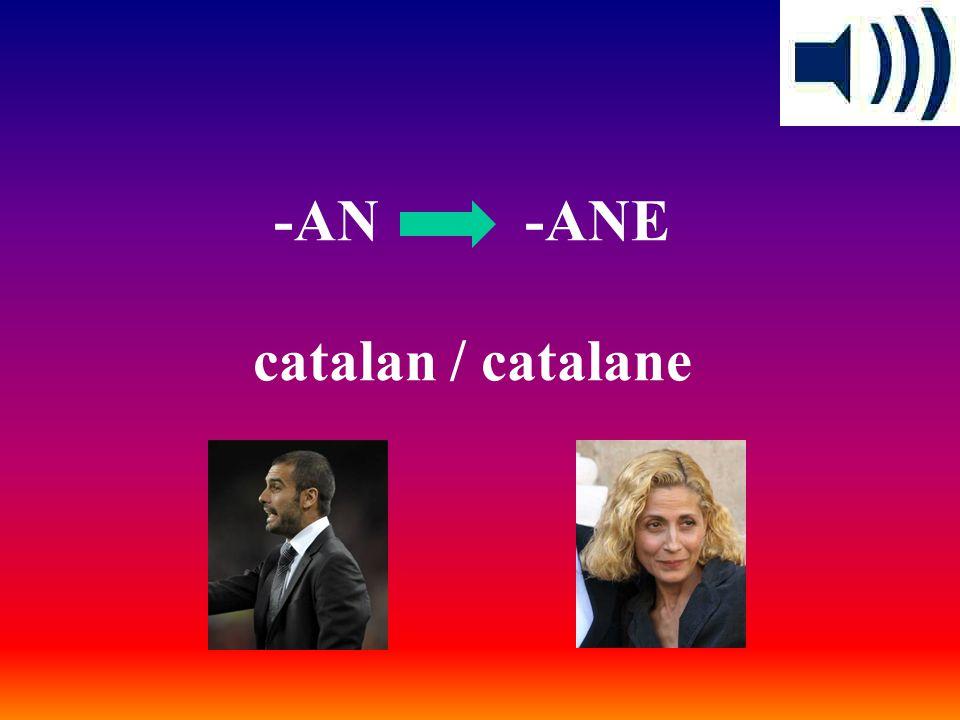 -AIS -AISE français / française