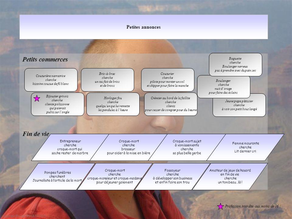 Petites annonces Petits commerces Fin de vie Copyright Philippe GOURDIN 2010 Bric-à-brac cherche un tas fait de brics et de brocs Croque-mort cherche
